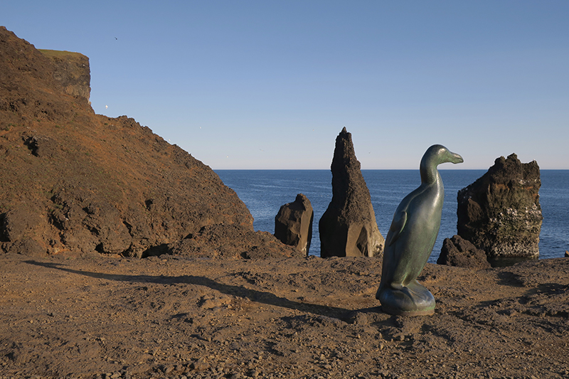 бескрылая гагарка (лат. Pinguinus impennis) Great Auk  (Большой Чистик)