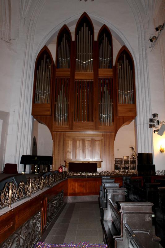 Калининград, Кафедральный собор - орган