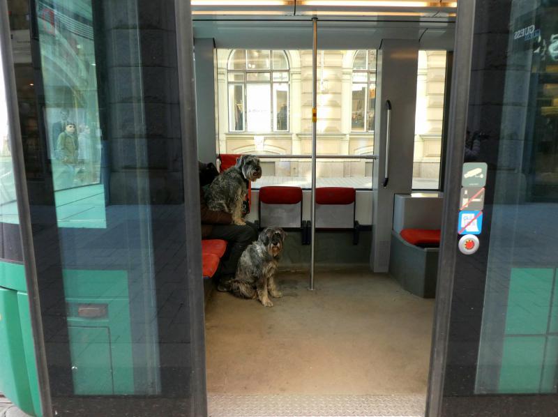 Транспортная система Хельсинки